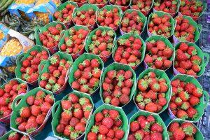 תותים בזיל הזול בשוק רספיי