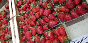 תותים מהממים בשוק מירובסקה